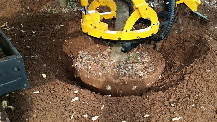 起挖出的土球